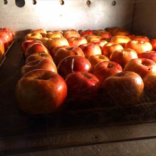 焼りんごを500個も使用したサンクトガーレンの秋冬限定クラフトビール「アップルシナモンエール」